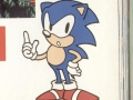 Sonic 2 Manual Art - Pg 18