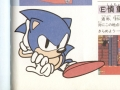 Sonic 2 Manual Art - Pg 20