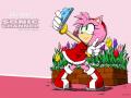 Amy Rose #11