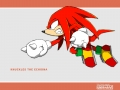 Knuckles #7