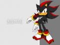 Shadow #8