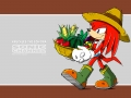 Knuckles #10