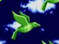 Special Zone - Birds