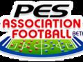 PES-AF - Logo