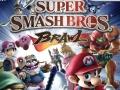 Super Smash Bros. Brawl - Packshot (USA)