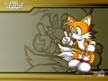 Sonic Battle - Tails
